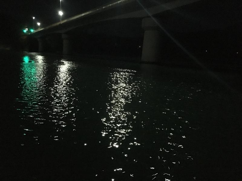 美々津大橋