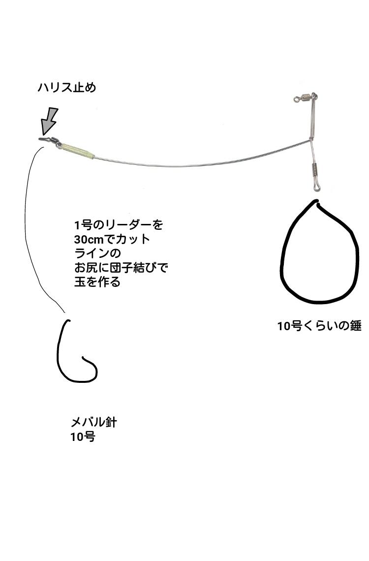 f:id:turisukisanntouhei:20200126083740j:plain