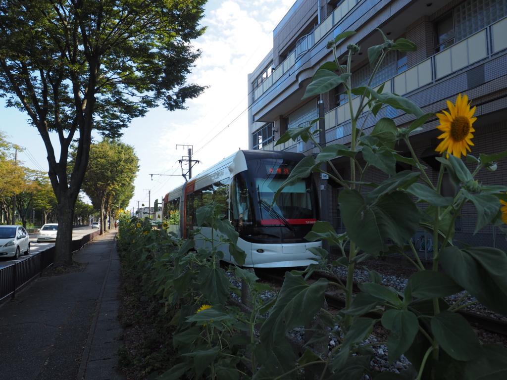 f:id:turumigawa915:20160913003555j:plain