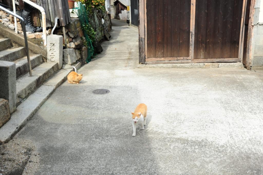 f:id:turumigawa915:20170227233733j:plain