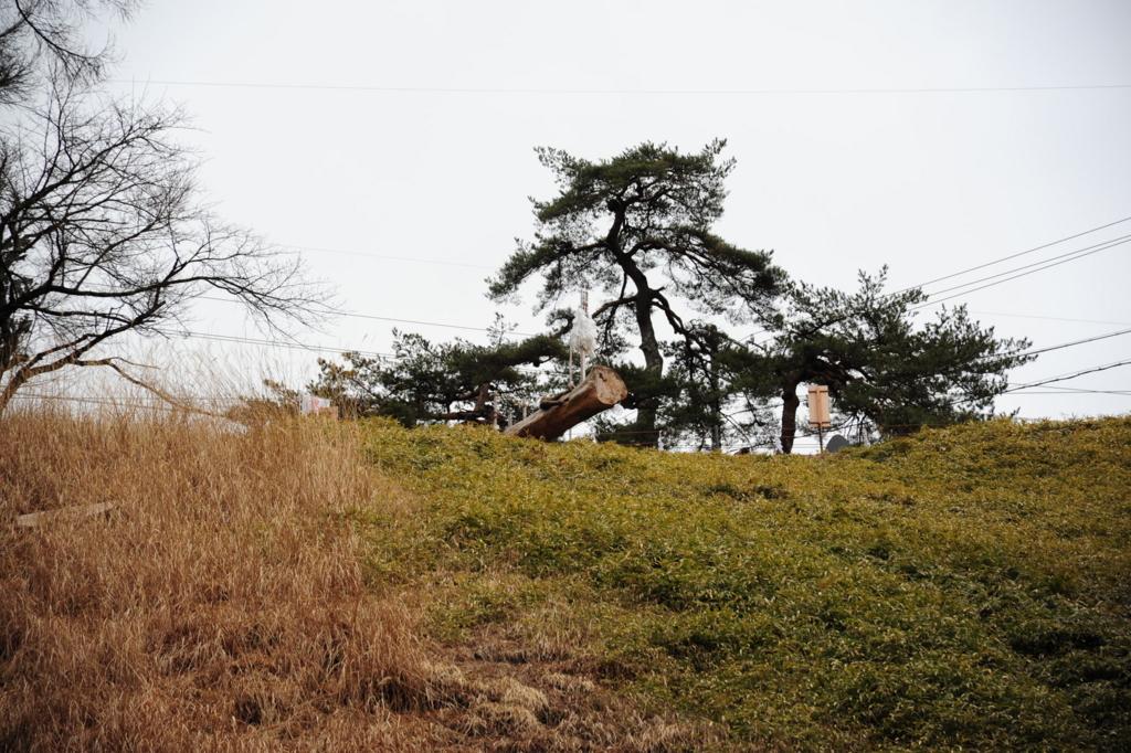 f:id:turumigawa915:20170402225859j:plain