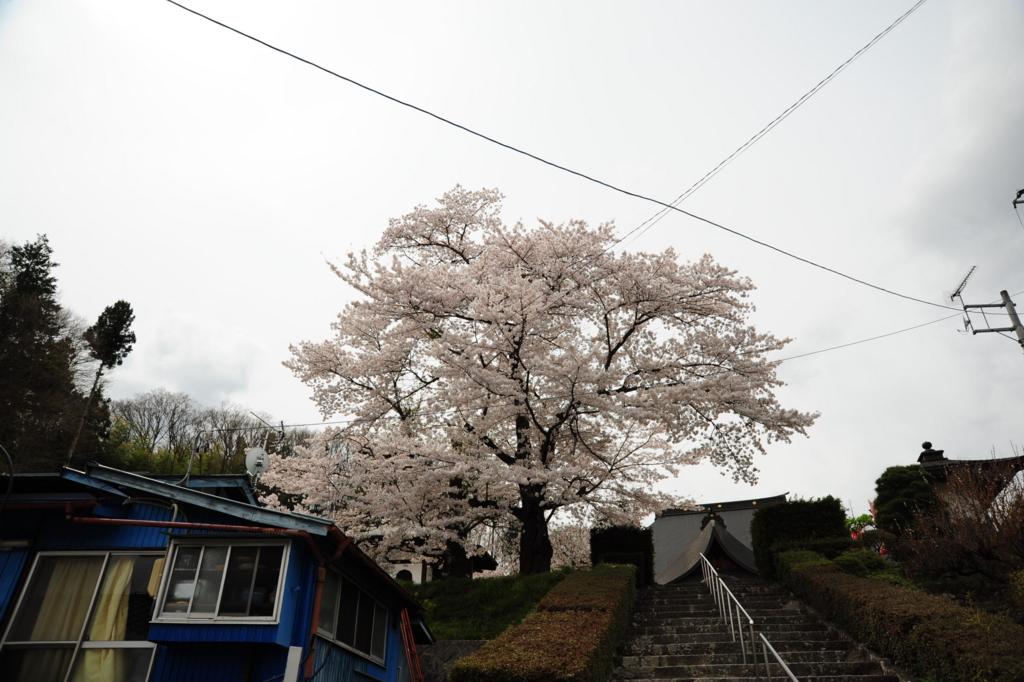f:id:turumigawa915:20170421195635j:plain