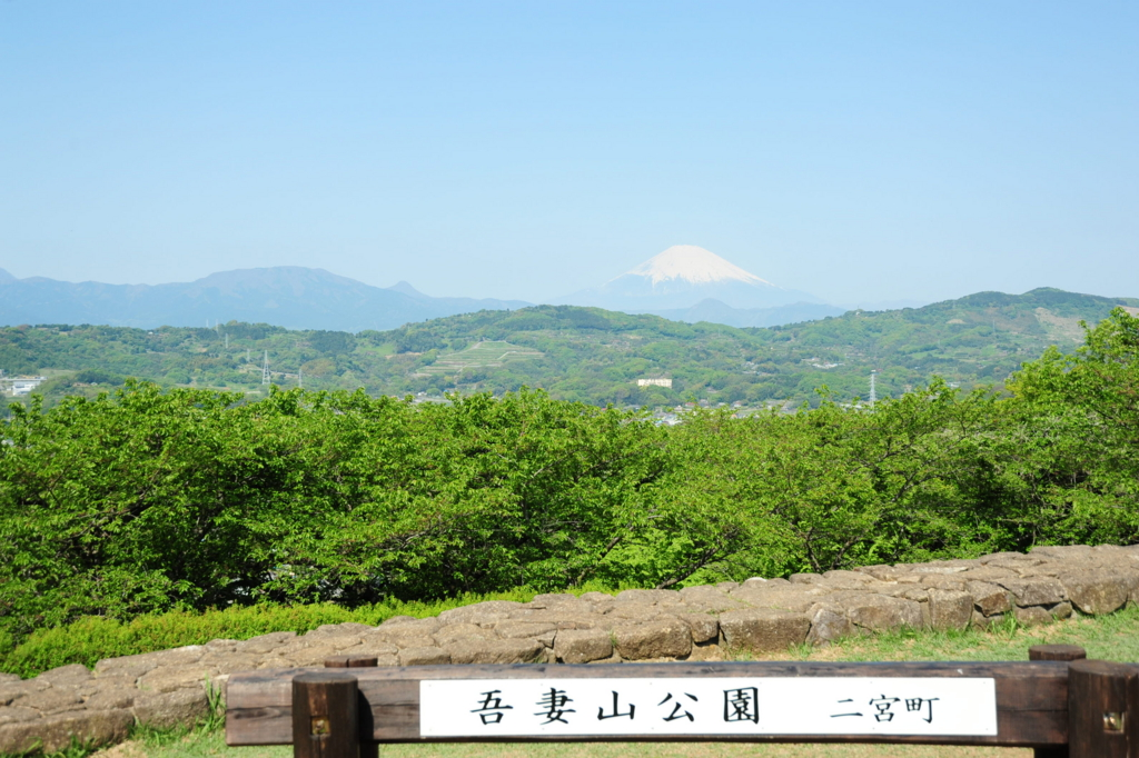 f:id:turumigawa915:20170430134955j:plain