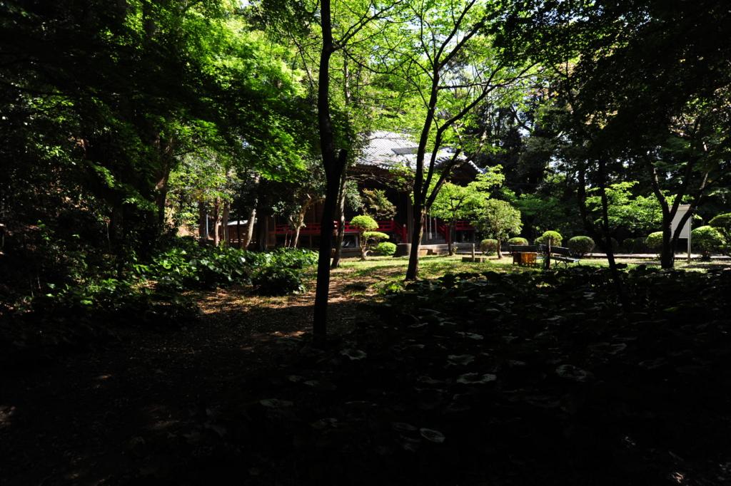 f:id:turumigawa915:20170430135148j:plain