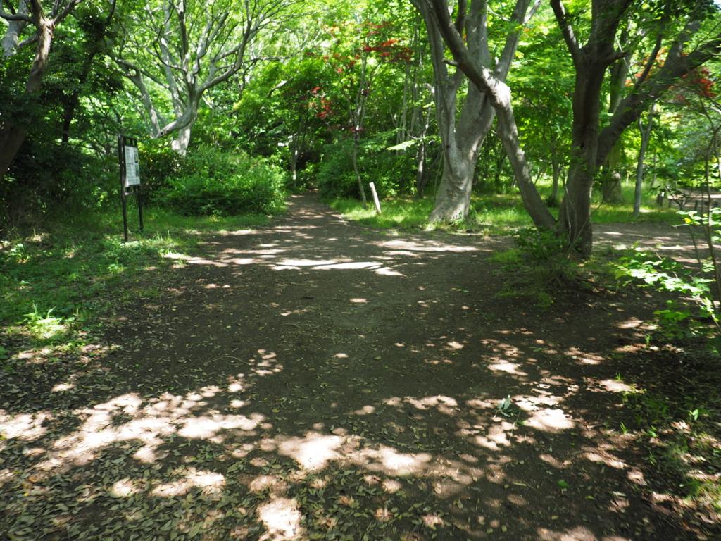 f:id:turumigawa915:20170528144649j:plain