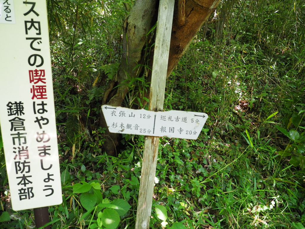 f:id:turumigawa915:20170528160358j:plain