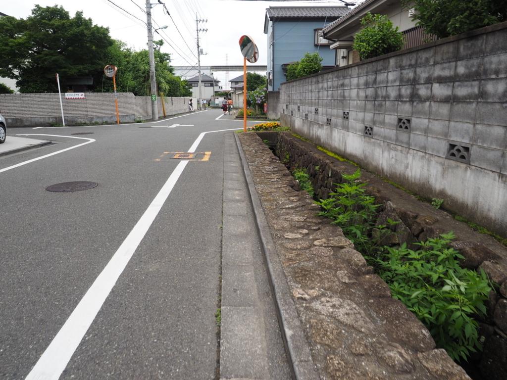 f:id:turumigawa915:20170702212343j:plain