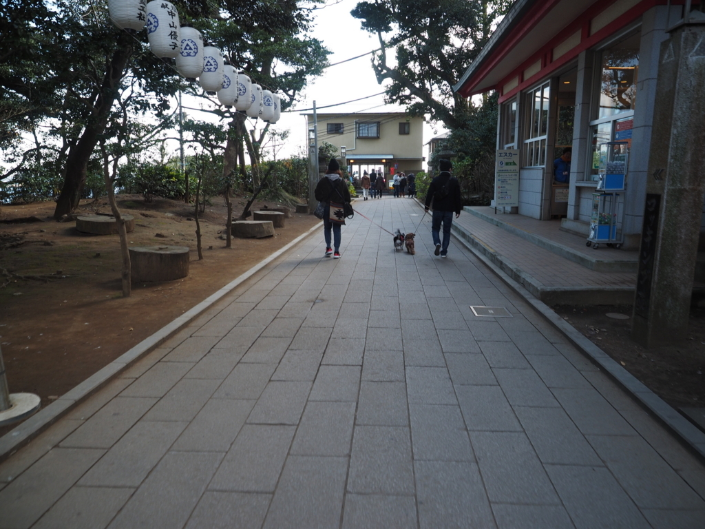 f:id:turumigawa915:20180108143826j:plain