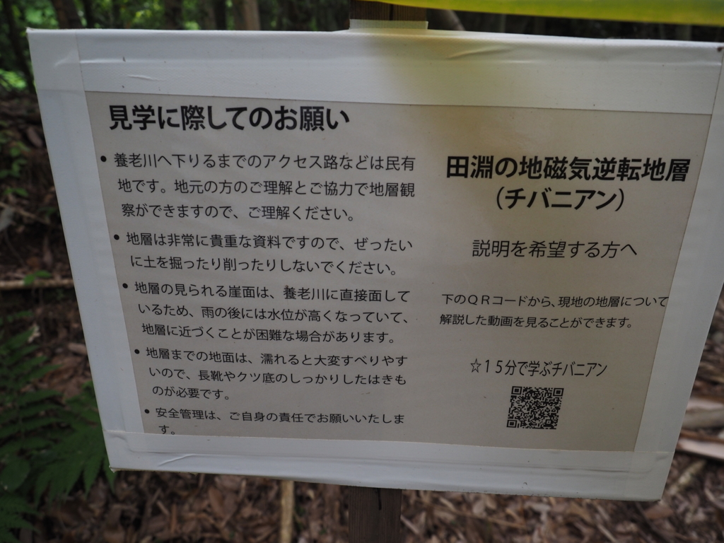 f:id:turumigawa915:20180527194549j:plain