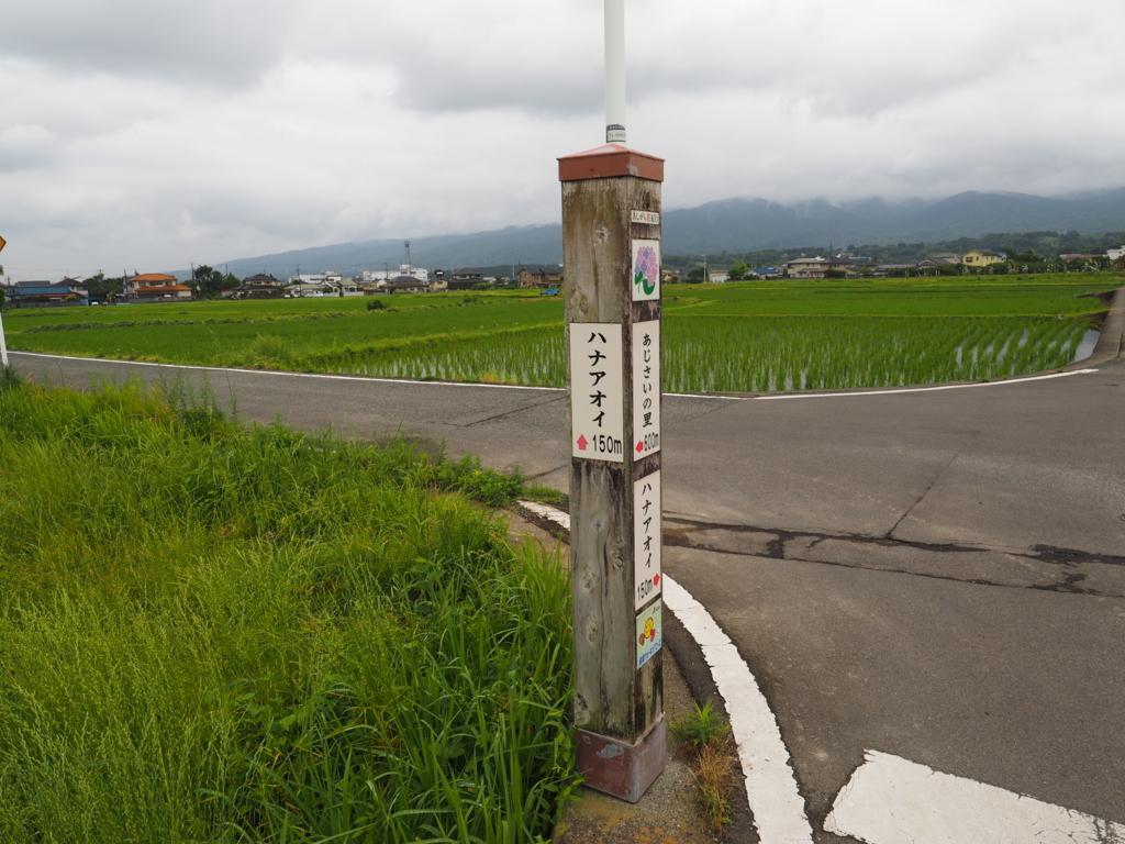 f:id:turumigawa915:20180617210847j:plain