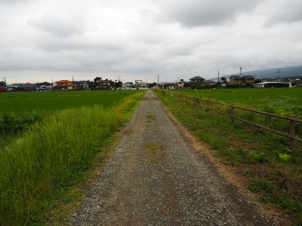 f:id:turumigawa915:20180617212123j:plain