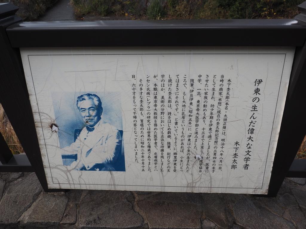 f:id:turumigawa915:20190101195728j:plain