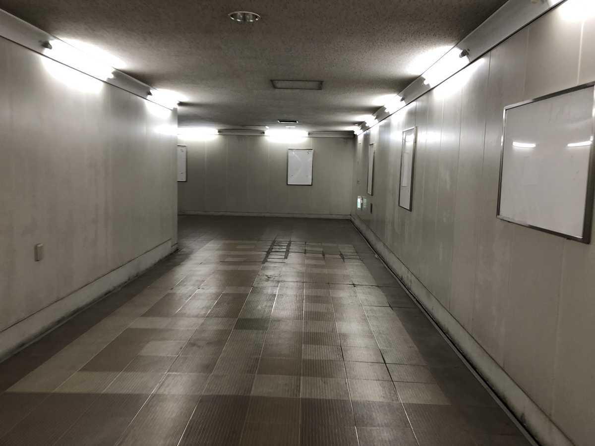 f:id:turumigawa915:20190327075137j:plain