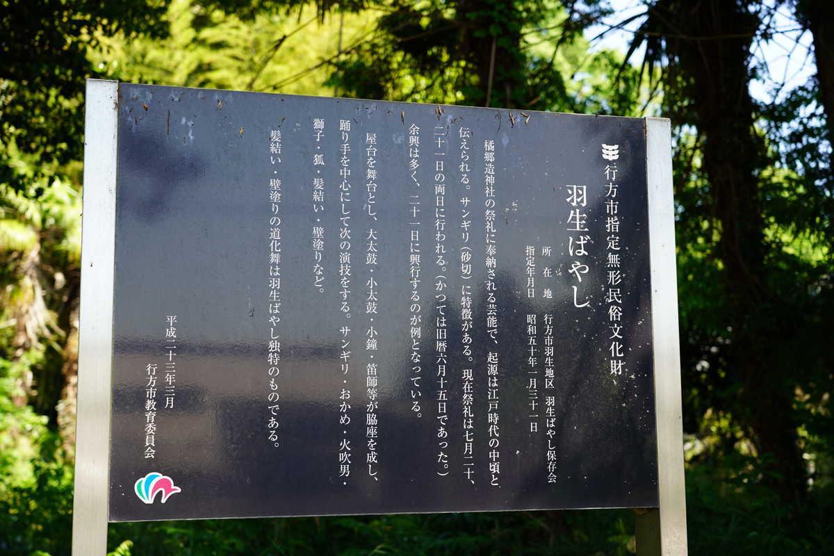 f:id:turumigawa915:20190526171556j:plain