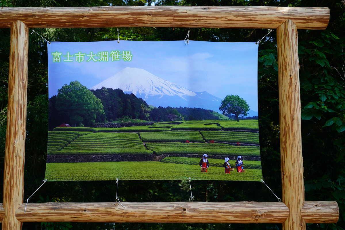 f:id:turumigawa915:20190602201910j:plain