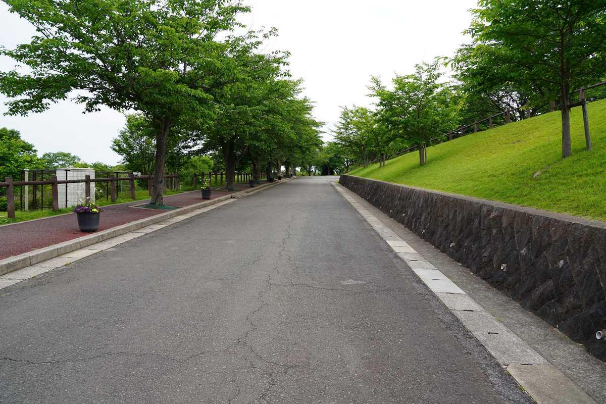 f:id:turumigawa915:20190603221338j:plain