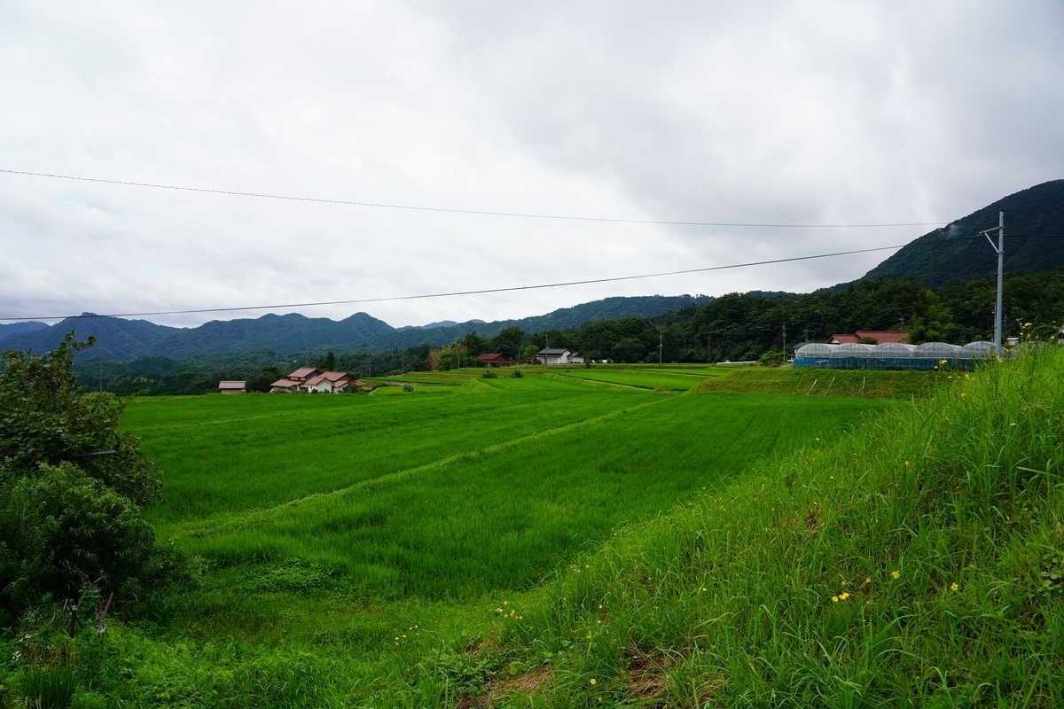 f:id:turumigawa915:20190728211119j:plain