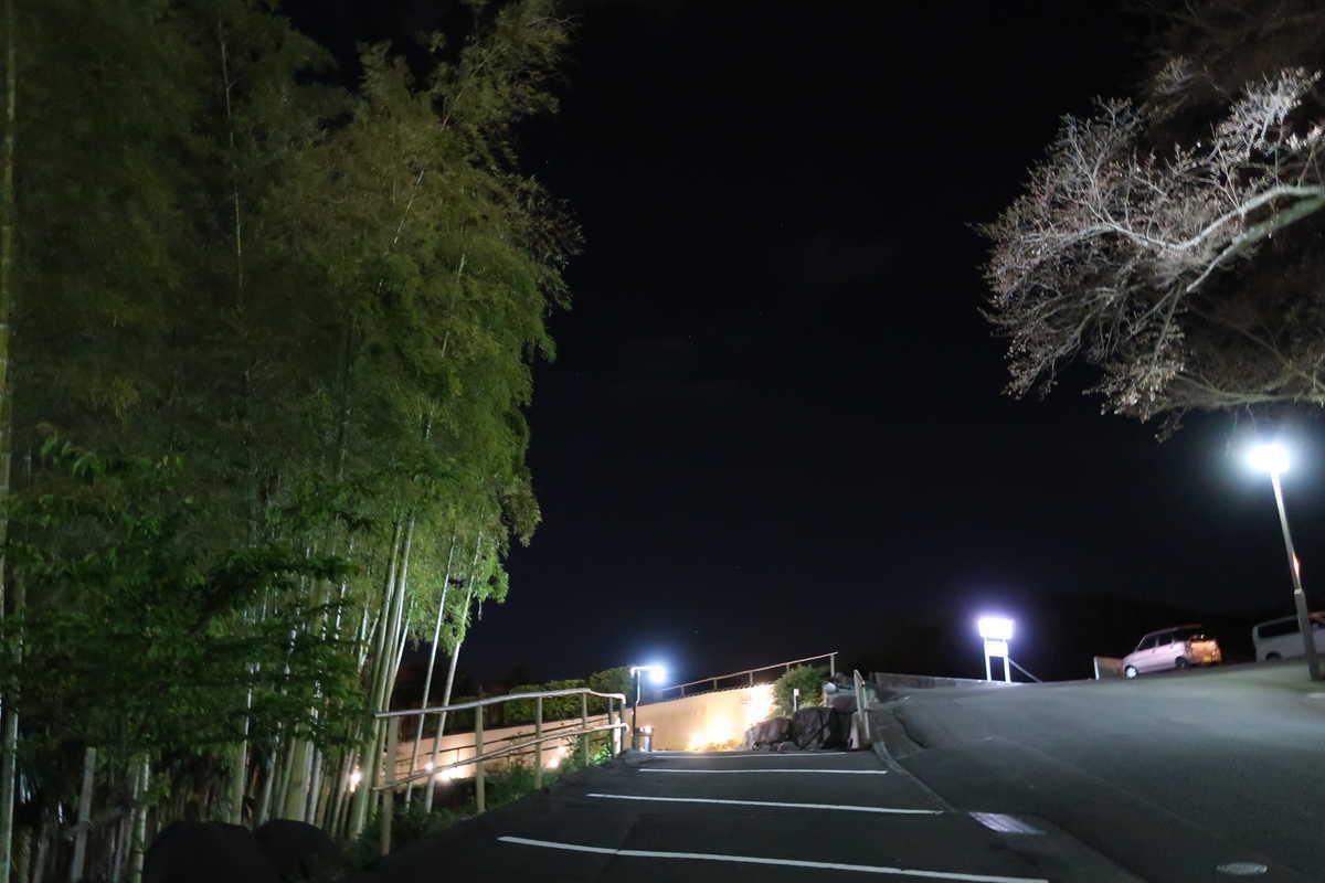 f:id:turumigawa915:20200401190819j:plain