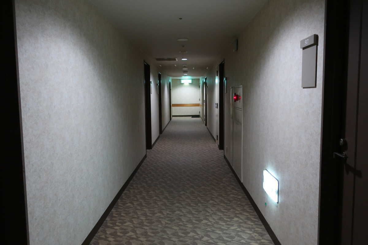 f:id:turumigawa915:20200604151329j:plain
