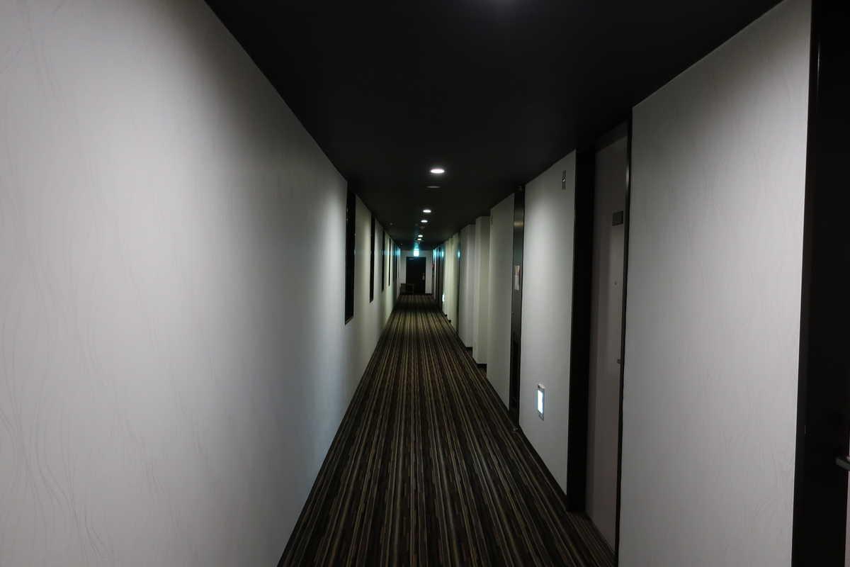 f:id:turumigawa915:20200606193458j:plain