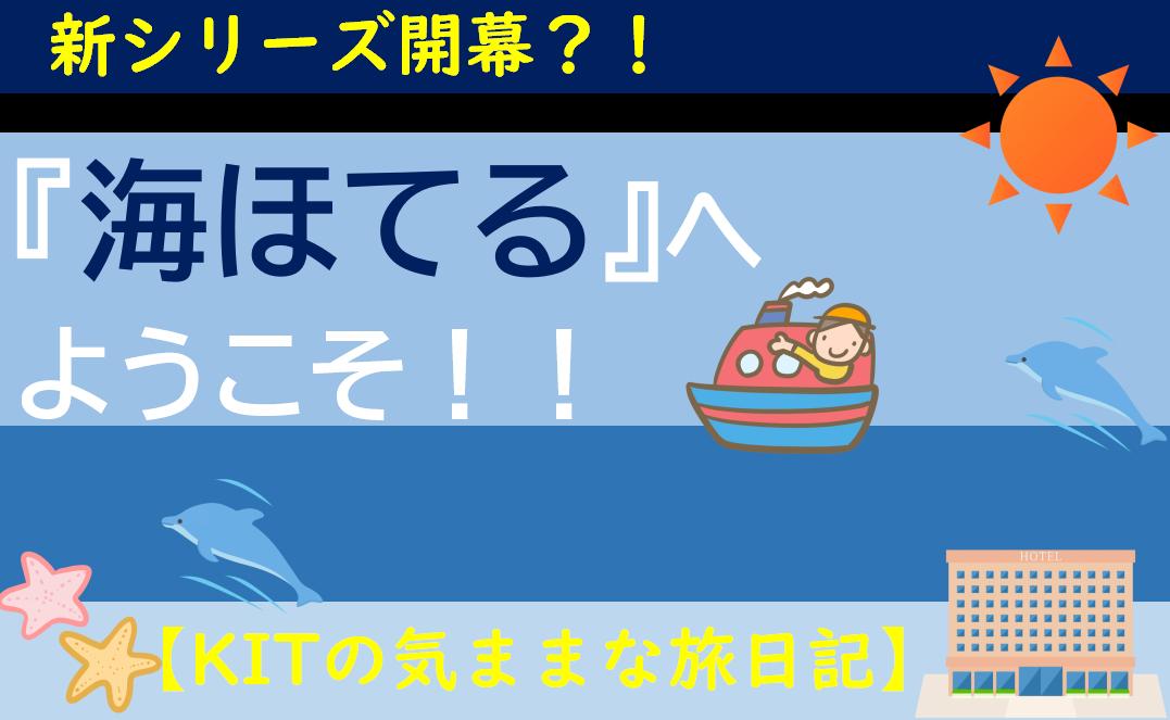 f:id:turumigawa915:20200614005515p:plain