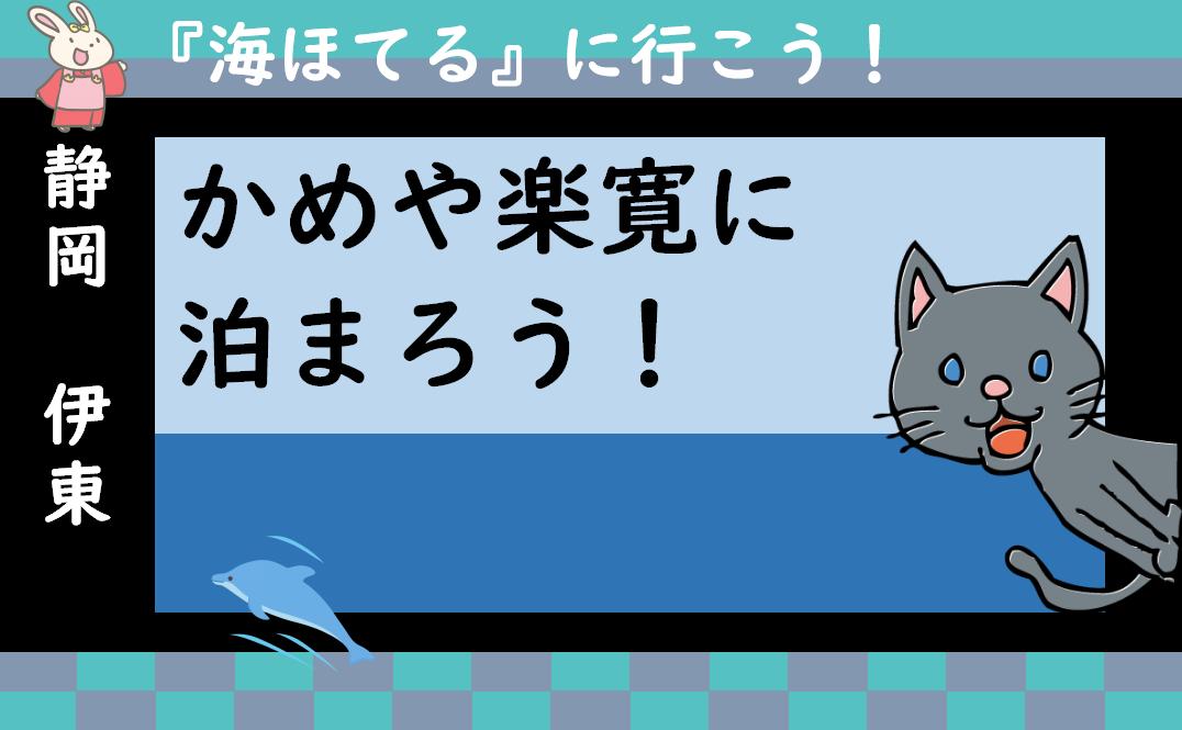 f:id:turumigawa915:20200617214217p:plain
