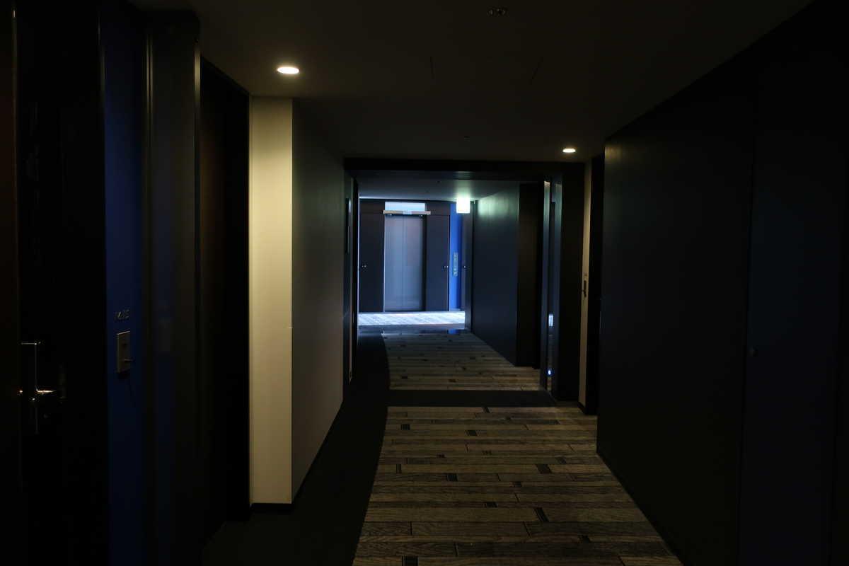 f:id:turumigawa915:20200802192146j:plain