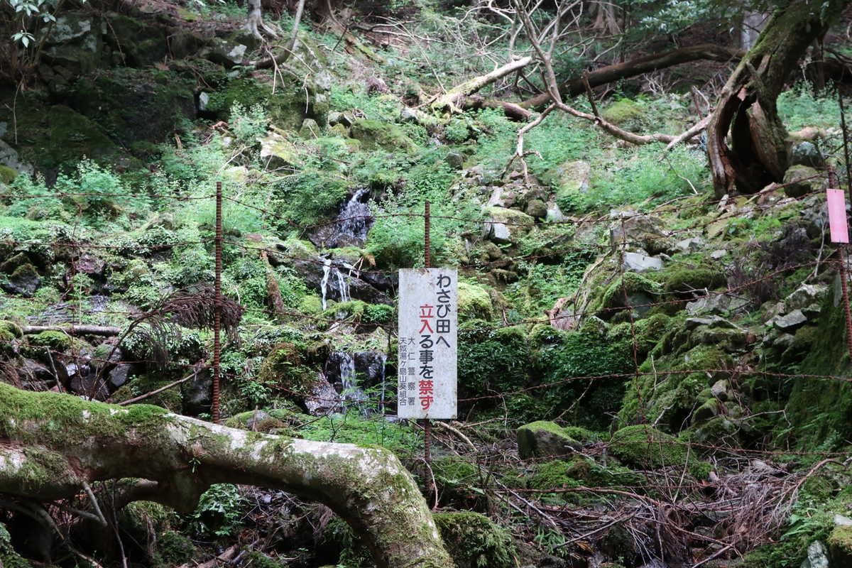 f:id:turumigawa915:20200905212010j:plain