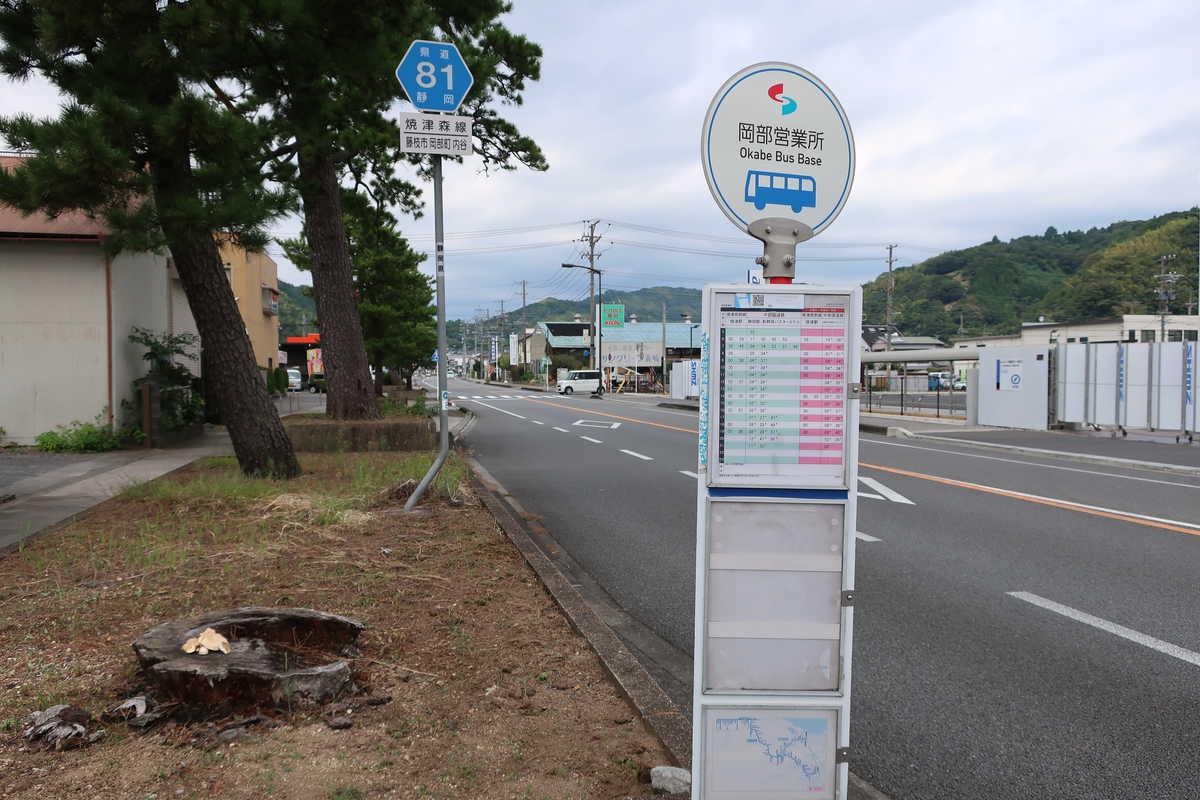 f:id:turumigawa915:20201108223702j:plain