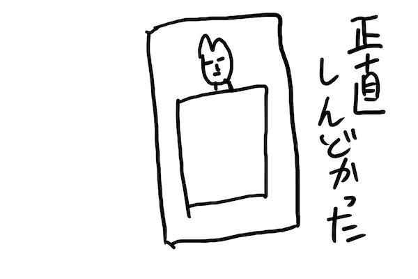 f:id:tusagi:20161229120809j:plain