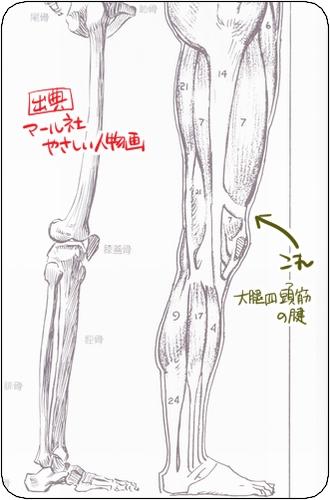 f:id:tusako-d:20180905231904j:plain