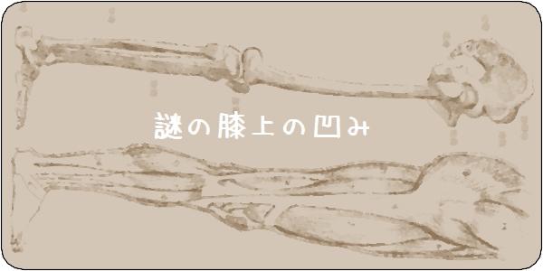 f:id:tusako-d:20180905234722j:plain