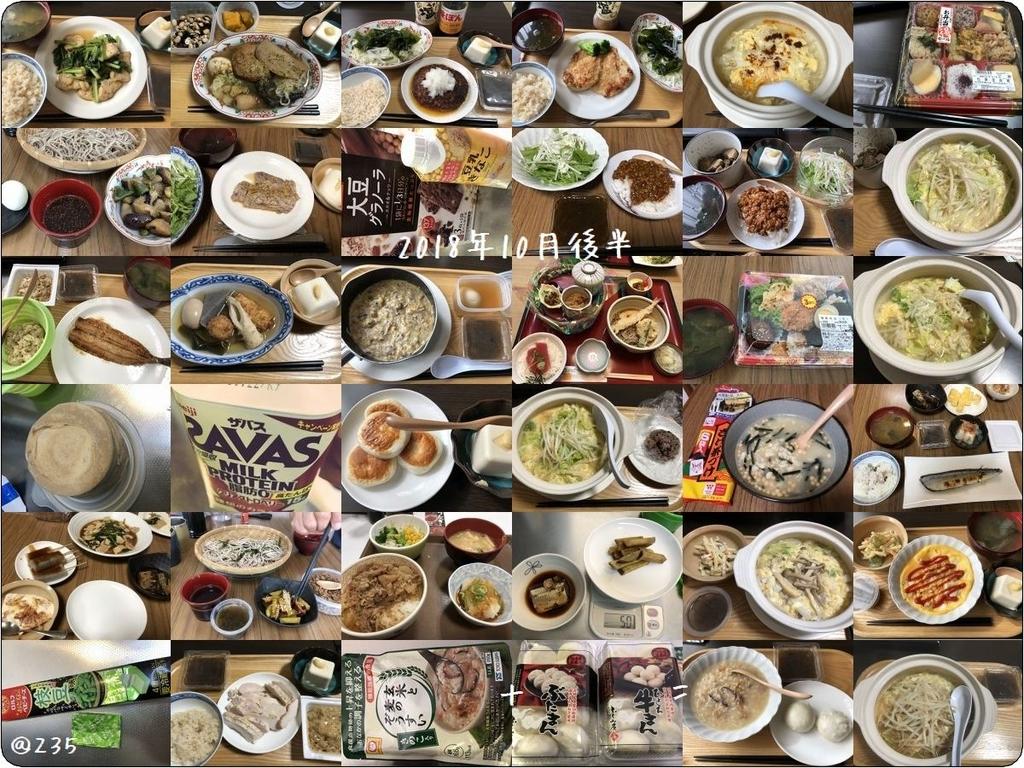f:id:tusako-d:20181101211052j:plain