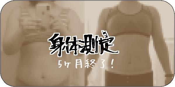 f:id:tusako-d:20181115161243j:plain