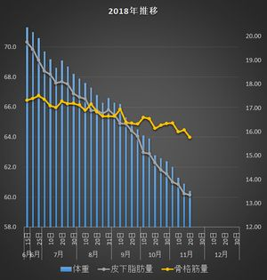 f:id:tusako-d:20181121121529j:plain