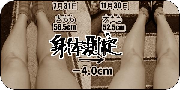 f:id:tusako-d:20181130155614j:plain