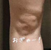 f:id:tusako-d:20181202121020j:plain