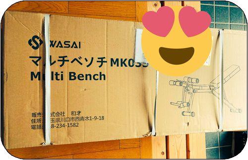 f:id:tusako-d:20181205113208j:plain