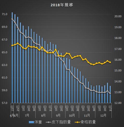 f:id:tusako-d:20181231120212j:plain