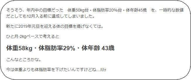 f:id:tusako-d:20181231143315j:plain