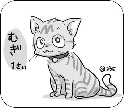 f:id:tusako-d:20190220160842j:plain