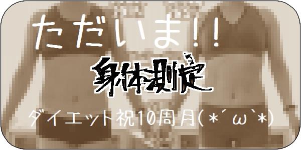 f:id:tusako-d:20190415143904j:plain