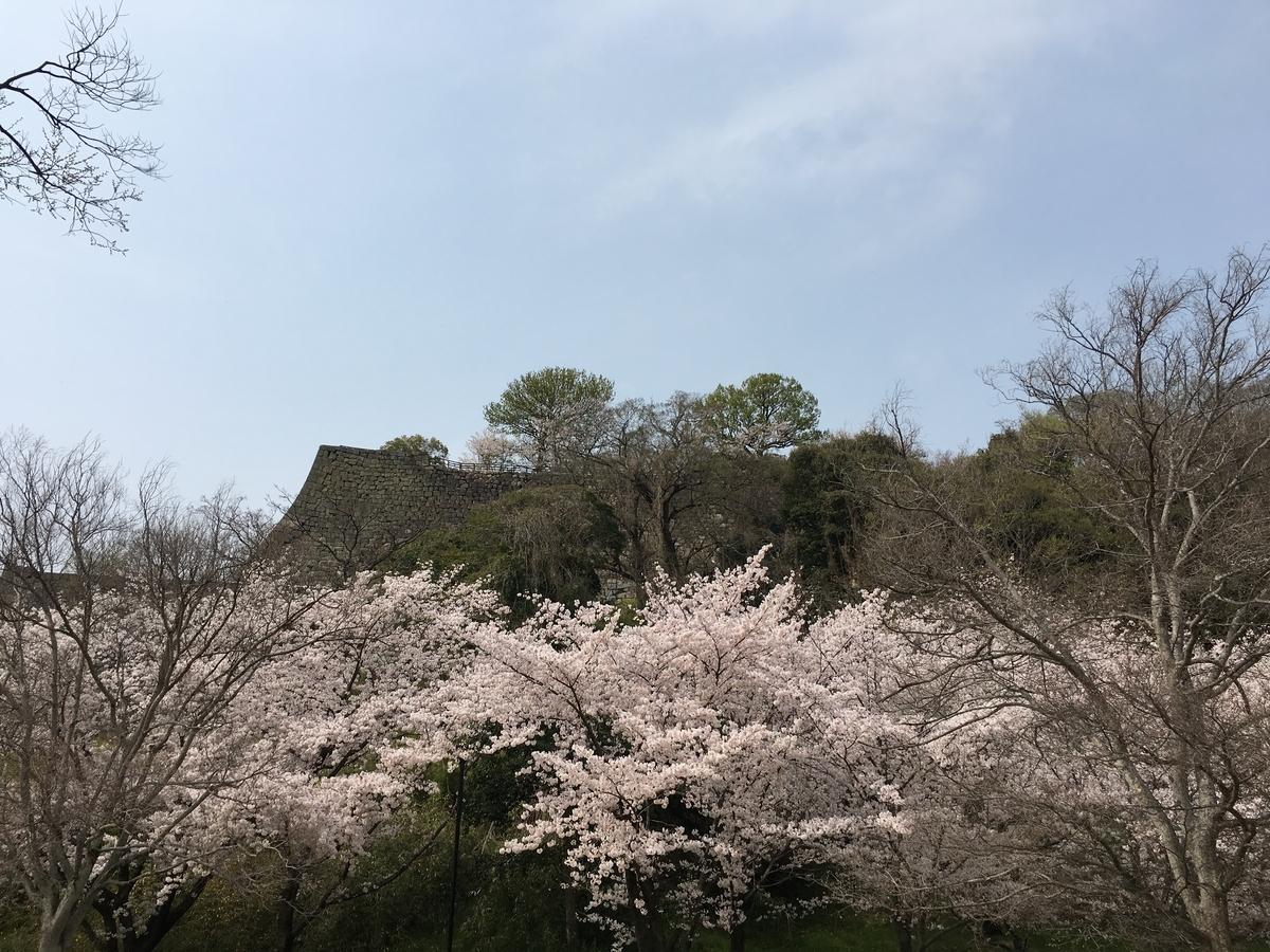 f:id:tushima_yumiko:20210409002251j:plain