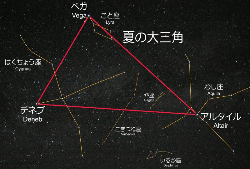 f:id:tushima_yumiko:20210723102258p:plain