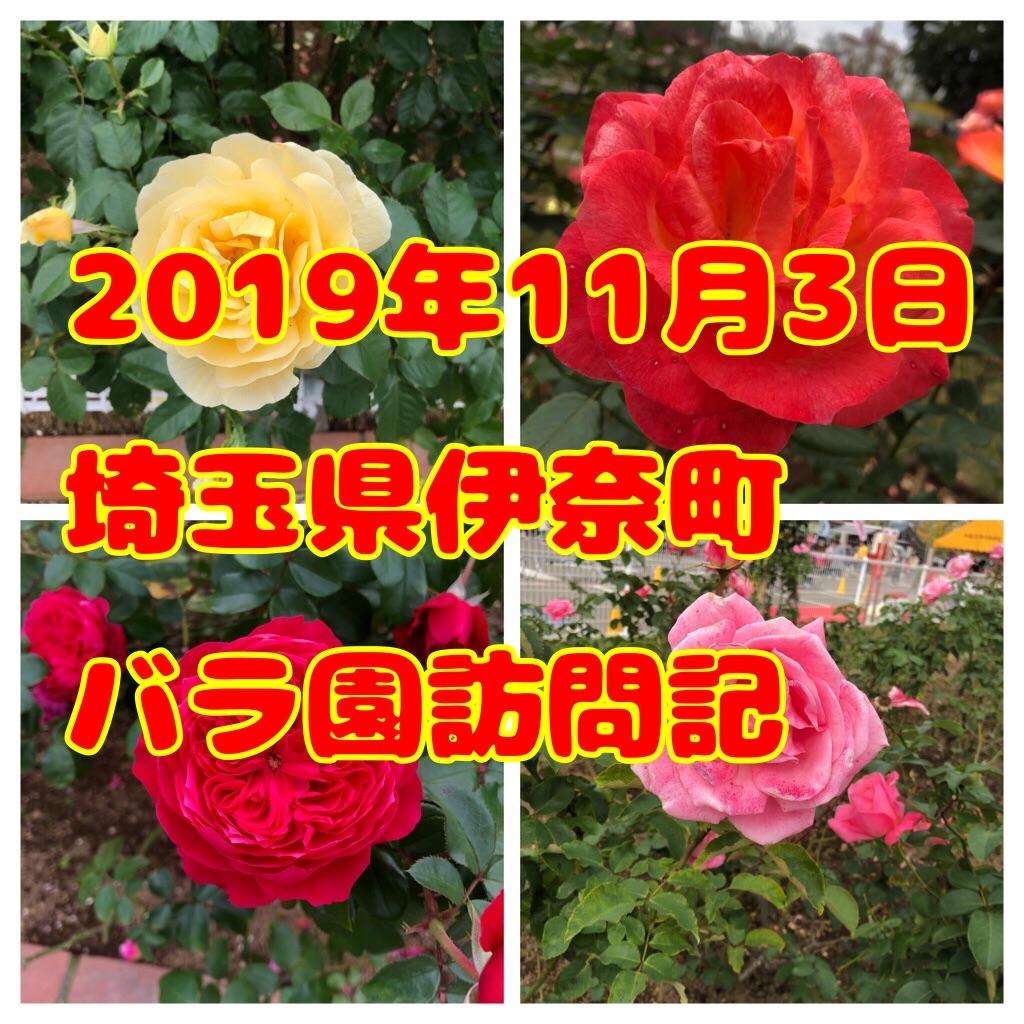 f:id:tuyoki:20191103175932j:image