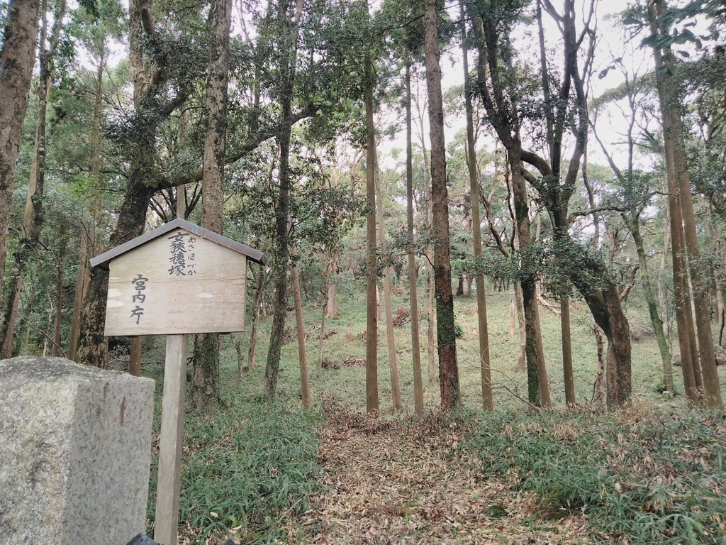 f:id:tuyomushi99:20181125194927j:plain