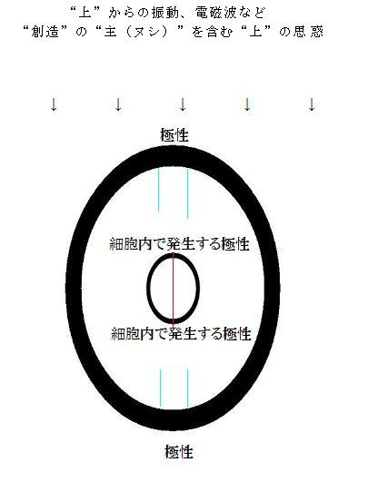 f:id:tuyukusanotuyu:20161024032225j:plain