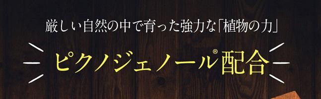 f:id:tv-shoukaishouhin:20180219180132j:plain