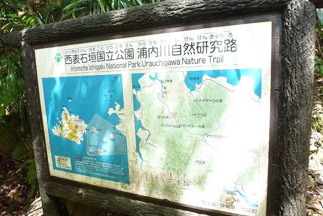 浦内川遊歩道