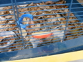 f:id:twincanon:20110603093928j:image:medium